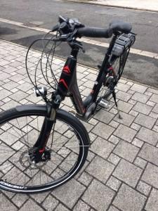 Pedelec_E-Bike_1